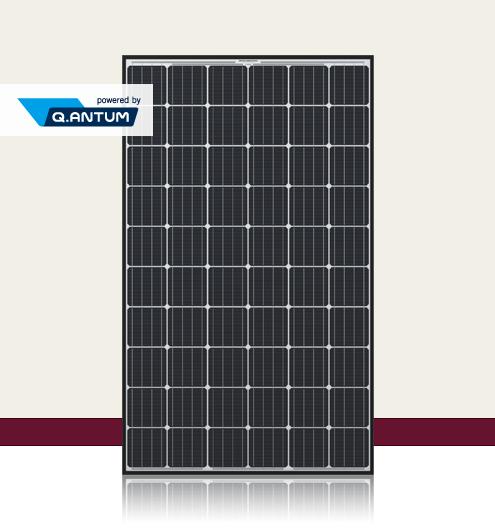 太陽光発電パネル Q.PEAK-G4.1